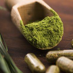 La spiruline, une algue miracle healthy, pour les sportifs et bonne pour la peau et les cheveux