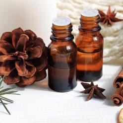 Propriétés de l'huile essentielle de ravintsara, la star de l'hiver