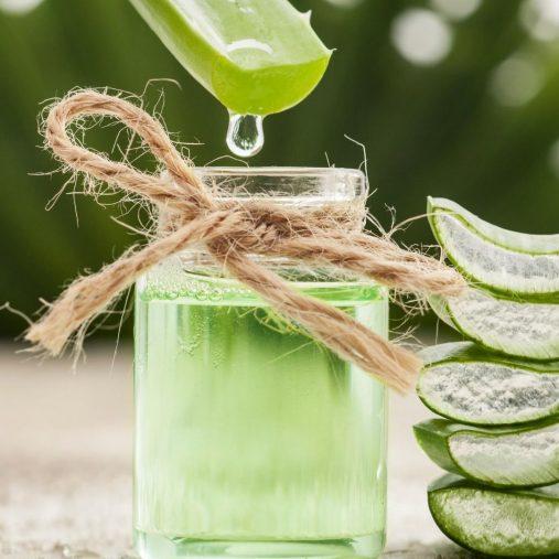 L'aloe vera pour les cheveux