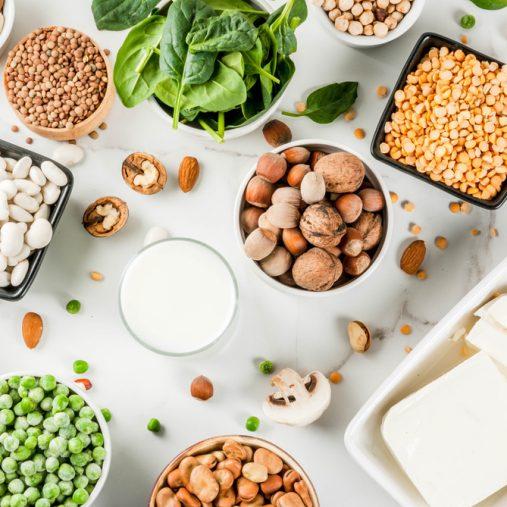 Zoom sur les protéines vegetales
